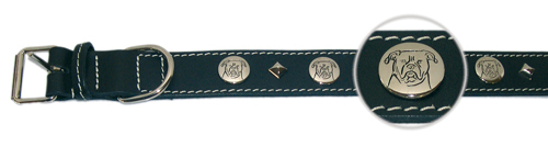Linea Start up - AMERICAN BULLDOG 65cm