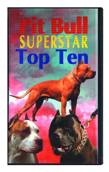 02_Pit Bull Super Star Top Ten